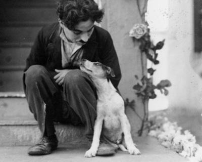 fuckyeahchaplin:  Charlie and Scraps on the set of A Dog's Life c.1918 one of my favourite pics of Charlot This film is the second of five of Charlie's films to have a dog play a part in his adventures, the others being (in order) The Champion, The Gold Rush, City Lights and Modern Times.  (He also had an angel dog with him in the dream sequence in the Kid. I used to be convinced this was on the set of the Kid)