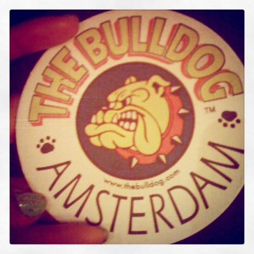 #TheBulldog (Taken with instagram)