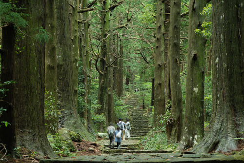 Unesco world heritage pilgrim route, Wakayama, Japan by ippei + janine on Flickr.