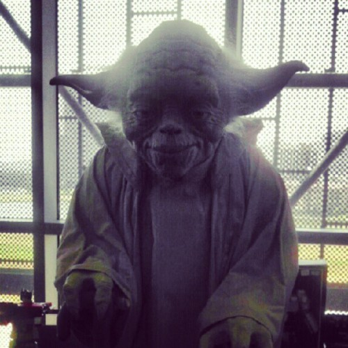 Cool Yoda statue. #DallasComicCon  (Taken with instagram)