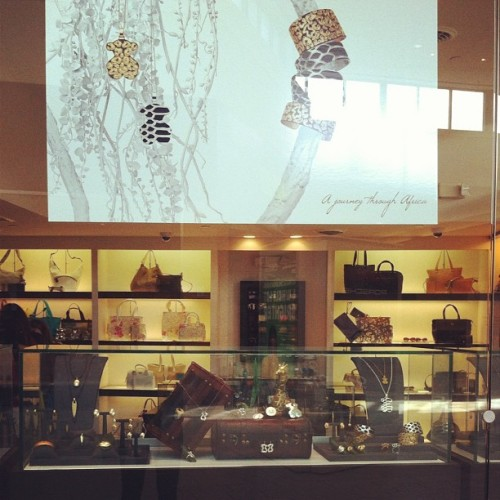 A journey through Africa #display #africa #bear #tous @tousjewelry  (Taken with instagram)