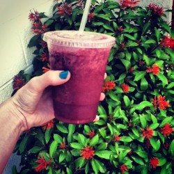 Costco smoothies are the greatest 👍 #smoothie #berry  #Costco #Arizona #yum #drink #summertime #plant #nails  (Taken with instagram)
