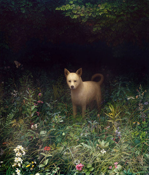 Dog by Aron Wiesenfeld