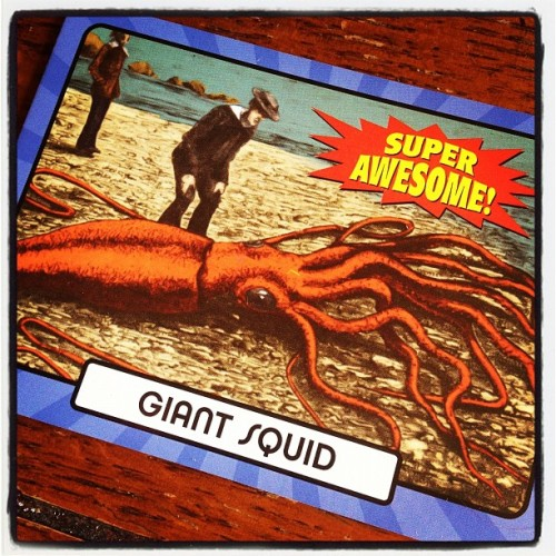laughingsquid:  Giant Squid Super Awesome!