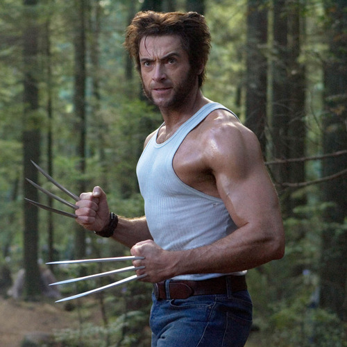totalfilm:  The Wolverine begins filming in August The Wolverine, Fox's long-gestating sequel to X-Men Origins, looks to be inching ever closer to our screens with Hugh Jackman announcing that filming is set to begin on the project in August…