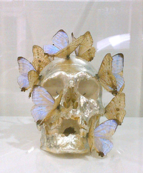 Philippe Pasqua, Vanity in gold leaf and butterfly, 2008, white base and plexiglass, 195 x 40 x 50 cm