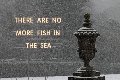 THERE ARE NO MORE FISH IN THE SEA
