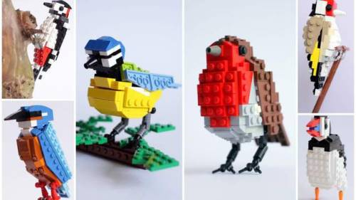LEGO birds by Thomas Poulsom (Source: industrialist)  Vote for the sets over at CUUSOO! If the birds garner 10,000+ supporters, they might get produced as an official LEGO product.