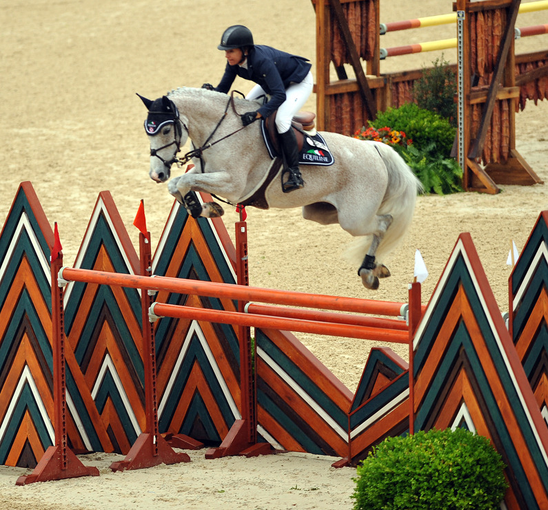 escaaalante:  wow. just wow. this is a 1.60m fence