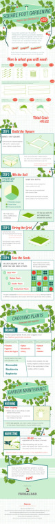 Square Foot Gardening infographic  The easiest and cheapest way to make your own garden in a square foot :D La forma más fácil y barata para tener un huerto en un espacio pequeño :D