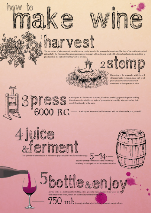 mvmtdesign:  Week 6: Liz's How To Make Wine Infographic When we drew infographic as the theme for Week 6 we all thought we would end up with three infographics with totally different subjects. Guess not. Christy and Liz both made their infographics about wine, but each took a different angle.