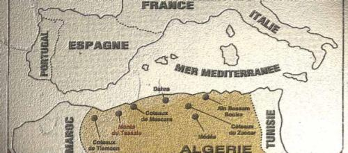 "Algeria Wine Producing Regions ""With as much land under vine as the countries of Germany and South Africa, Algeria continues to maintain a wine industry with over 70 wineries in operation. During the peak of Algerian wine production, the main grapes of the region was Carignan, Cinsaut and Alicante Bouschet. Despite not having Pinot noir or otherwise resembling Burgundian wine, blends of these grapes were often labeled as burgundy. In recent times, Clairette and Ugni blanc have become the dominate grape varieties with some smaller plantings of Cabernet Sauvignon, Chardonnay, Merlot, Mouvedre and Syrah. Algerian wines are characterized by their overripe fruit, high alcohol and lowacidity. The grapes often go through a short fermentation process and are bottled after little to no oak aging."""