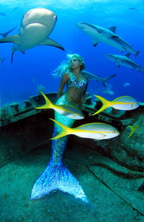 Beautiful Hannah Mermaid, under the sea.