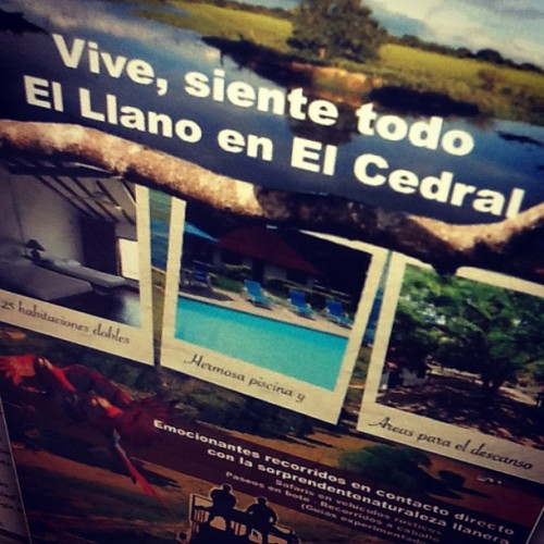 #poster #safari  (Taken with instagram)