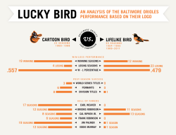 bearinbaltimore:  What's in a logo? Cartoon vs. Lifelike Oriole Bird