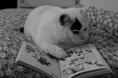 Black and White and Read All Over.