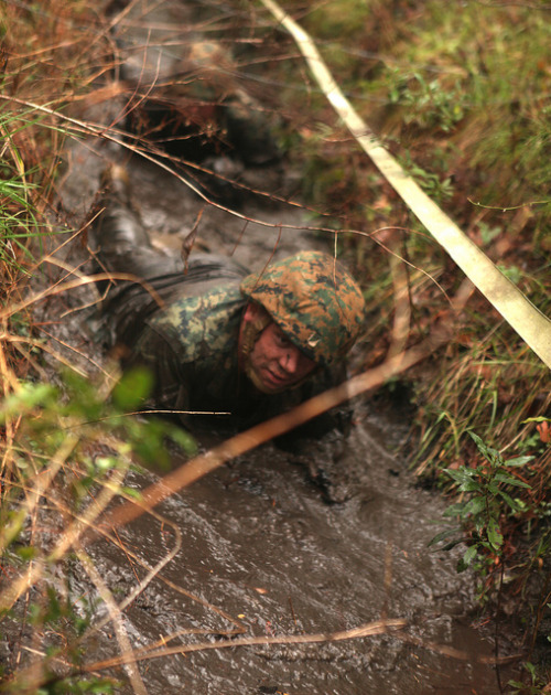 Facing Deactivation, 5/10 Marines Maintain Expeditionary Readiness [Image 2 of 2] by DVIDSHUB on Flickr.