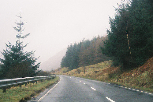 t0rpe:  (by Amy-Fern)
