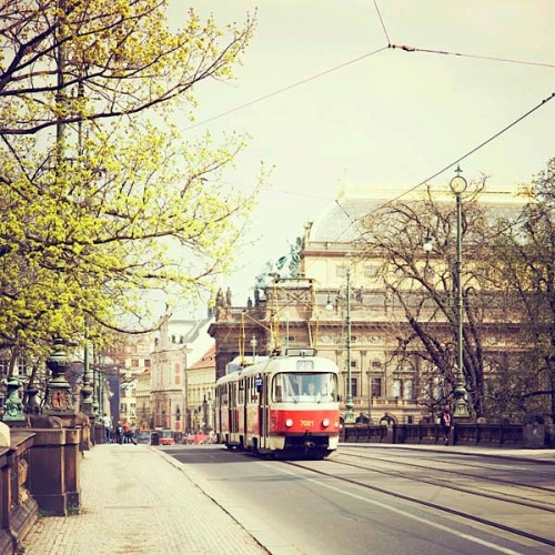 | ♕ | Prague spring - streetcar  | by ©.natasha. | via ysvoice