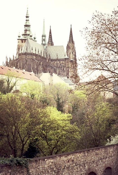 | ♕ |  Prague Spring - St. Vitus Cathedral  | by © .natasha. | via ysvoice