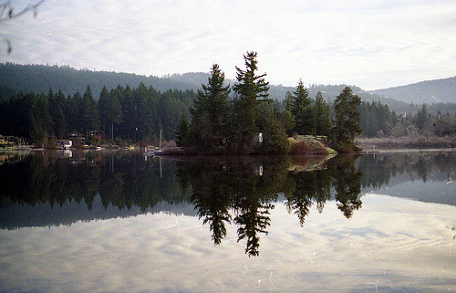 t0rpe:  shawnigan by JUNKYHANDS
