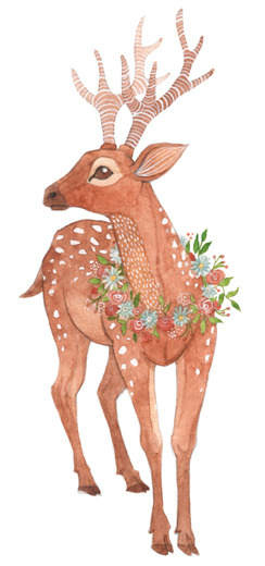 A deer illustrated by Oana Befort…