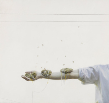 sikimi:  A BLOG curated by » Robert & Shana Parkeharrison III: hands of time