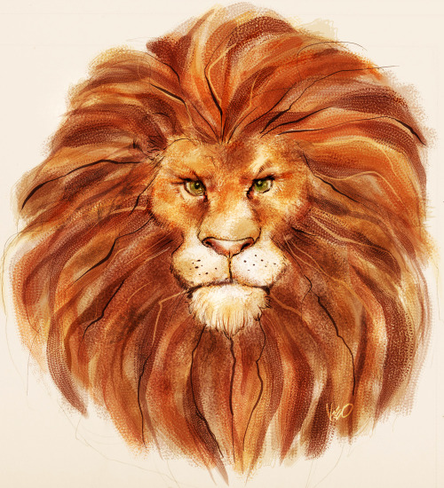 Aslan from Chronicles of Narnia. Contribution for Alphabooks .(http://alphabooks.tumblr.com/).