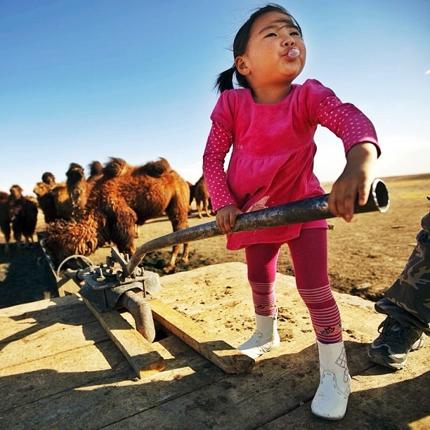 jwp:  Pumping water for the family camels in #mongolia. Google 'npr mongolia' for pictures and stories about the mining boom there. (Taken with Instagram at South Gobi, Mongolia)  Or just click here to go straight to the story.
