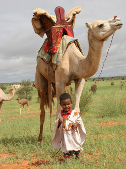 thealchemyofhappiness:  Future Camelmaster in Mauritania, West Africa (by Ferdinand Reus).