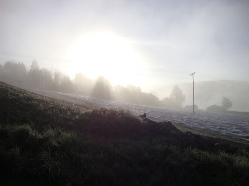 A foggy April morning in Norway 2012.