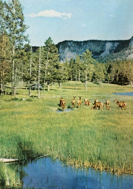 America's Wonderlands 1959, National Geographic Society