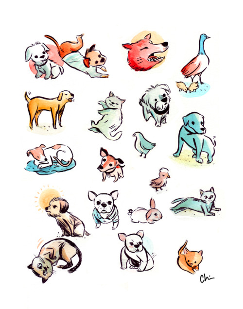 Here's a bunch of pets / random animals based off photos from my instagram feed. Spot your pet!