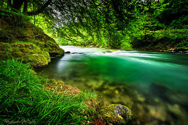 juliunstarks:  Emerald River by andreas krappweis private gardens on Flickr.