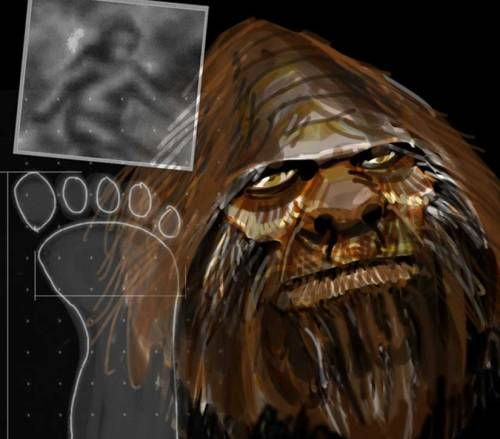 "Bigfoot and Yeti DNA Study Gets Serious A new university-backed project aims to investigate cryptic species such as the yeti whose existence is unproven, through genetic testing. Researchers from Oxford University and the Lausanne Museum of Zoology are asking anyone with a collection of cryptozoological material to submit descriptions of it. The researchers will then ask for hair and other samples for genetic identification. ""I'm challenging and inviting the cryptozoologists to come up with the evidence instead of complaining that science is rejecting what they have to say,"" said geneticist Bryan Sykes of the University of Oxford. keep reading"