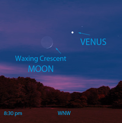 #Lookup! Can you catch Venus near a very slim waxing crescent Moon?