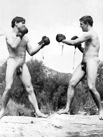 retrogasm:  Cock Fight!