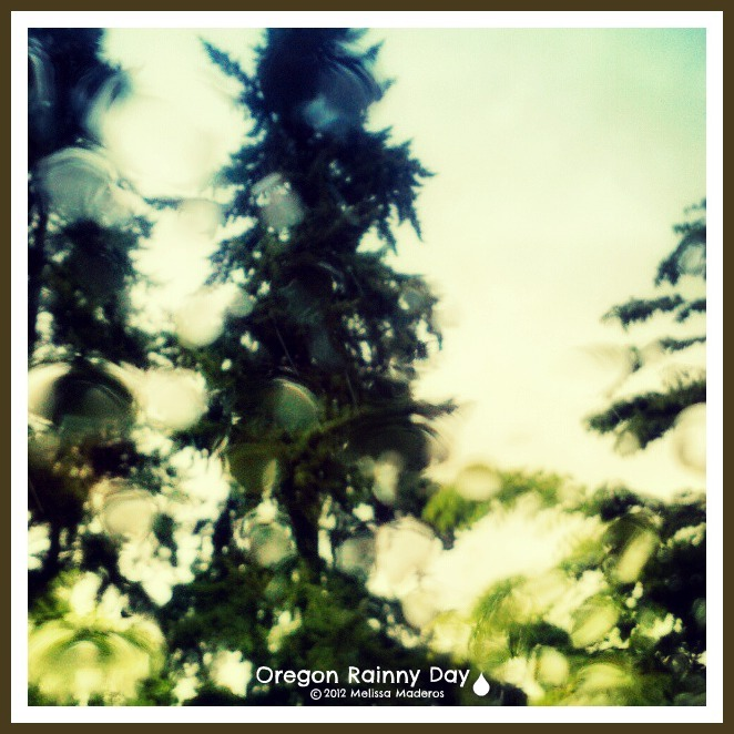 "LOVE our ""OREGON RAINNY DAY's"""