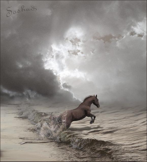 daxxxx:  and the horse was the water…the wave…