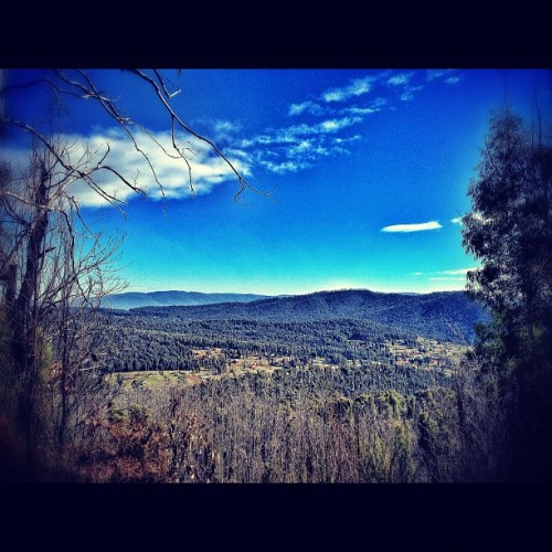 Looking down on #Marysville <3 | #victoria #bush #trees #view #roadtrip (Taken with instagram)