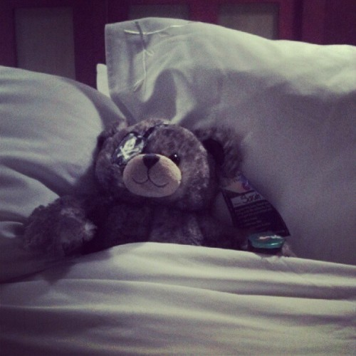 Bonnie Lee my new teddy. (Taken with Instagram at Disney's Grand Californian Hotel & Spa)
