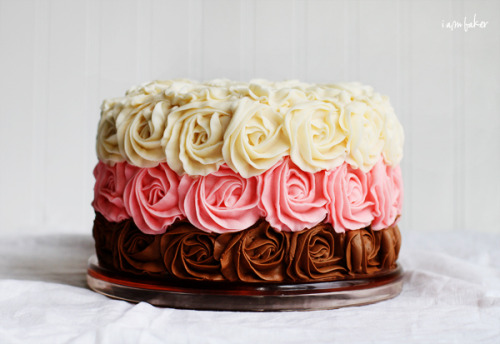 diet-killers:  (via Neapolitan Rose Cake | i am baker)