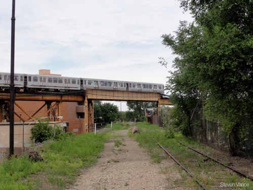 The Blue Line passes over the Bloomingdale Trail by Steven Vance on Flickr.