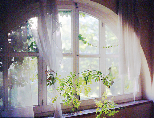 the-iridescence:  (by utsuru)