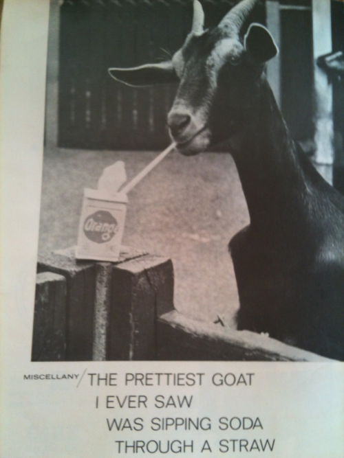 princesspaint:  Flicking through a 1950s Australian magazine today..