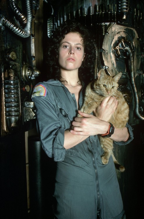 catbountry:  fowlie:  sweetappletea:  oldtobegin:  vortexanomaly:  Ripley and Jones  gpoy  The fact that she went back to save Jones is one of the many many reasons why Ripley kicks so much ass.   Do you think they would've had her go back for the cat if Ripley had been cast as a man, as originally intended? (or running around in his underwear)   Yay Ripley.  http://www.youtube.com/watch?list=UUMeByh8QFtyjVKkPsRE-kzQ&v=xBZu0X9Mbyc&feature=player_detailpage#t=574s