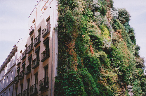 caixa forum in madrid, by jess gough.