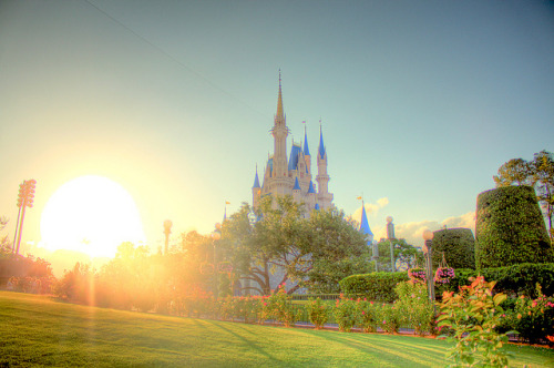 wdwbee:  Cinderella Sunset by Michelle McGrady on Flickr.