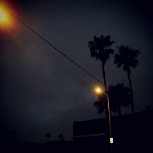 Good morning Los Angeles #LA #PalmTrees (Taken with instagram)