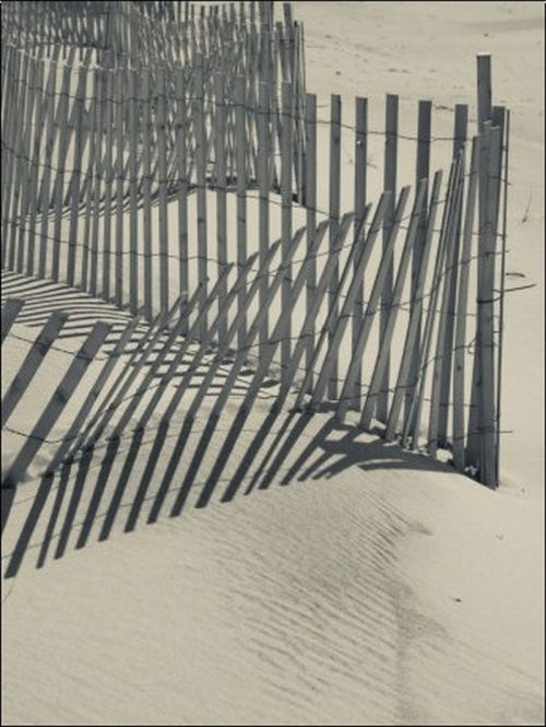 yama-bato:  Walter Bibikow New York, Long Island, the Hamptons, Westhampton Beach, Beach Erosion Fence, USA Photographic Prin